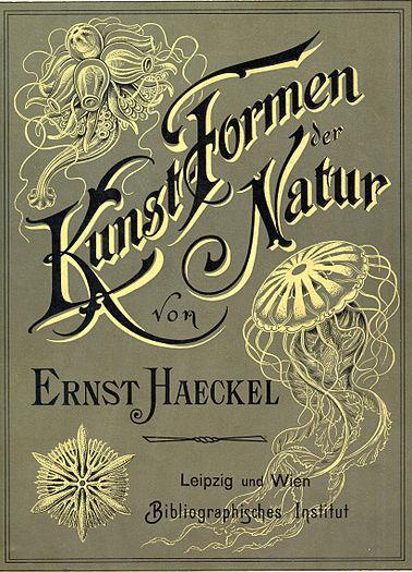 """Haeckel """"Artforms in Nature"""" cover"""
